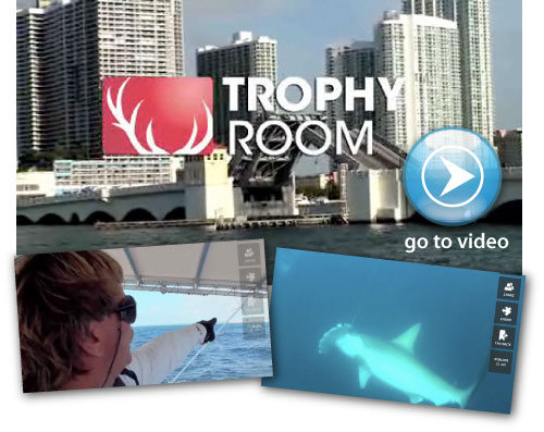 See Captain Mark the shark catch a monster shark on TrophyRoom.com
