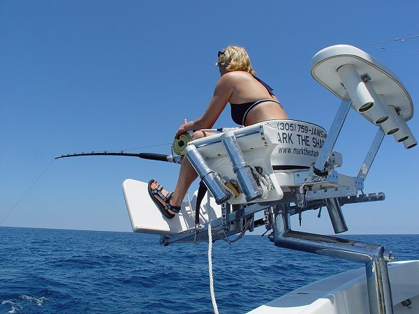 catch of the week with capt mark the shark fighting chair mounting specs fighting chair bucket harness