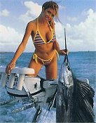 Monster Sailfish
