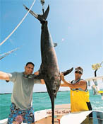 Monster Sword Fish