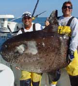 Monster Weird Trophy Fish
